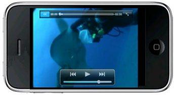 Visualisez la vidéo des raies des canaries sur votre IPHONE