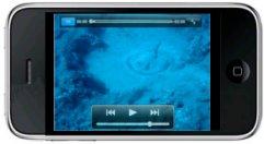 Découvrez la video des raies noire de TENERIFE sur votre iphone